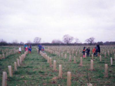 alrewas_school_national_memorial_arboretum_9.jpg