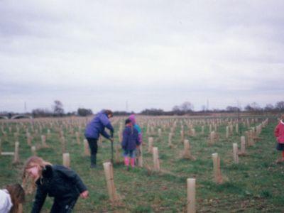 alrewas_school_national_memorial_arboretum_5.jpg