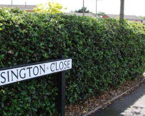 Essington Close